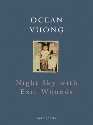 cover image of Night Sky with Exit Wounds