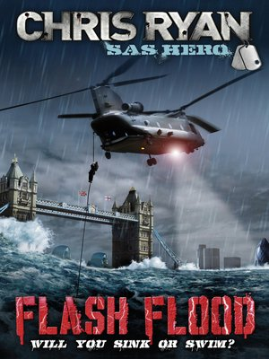 cover image of Flash Flood