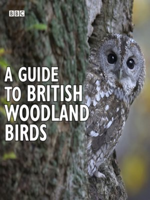 cover image of A Guide to British Woodland Birds