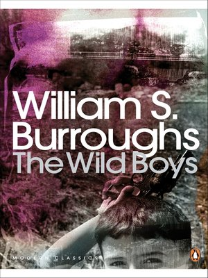 cover image of The Wild Boys
