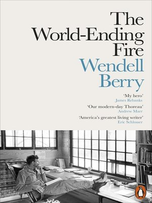cover image of The World-Ending Fire
