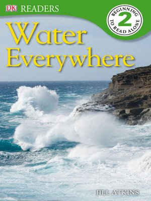 cover image of Water Everywhere