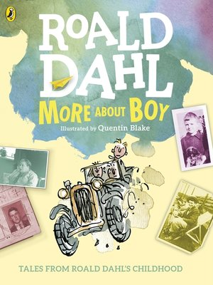 cover image of More About Boy