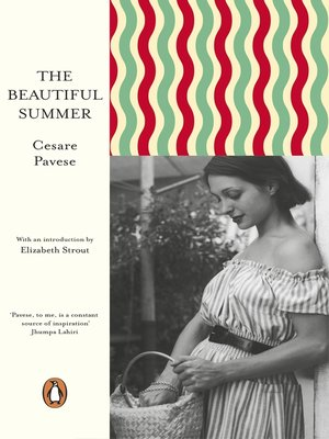 cover image of The Beautiful Summer