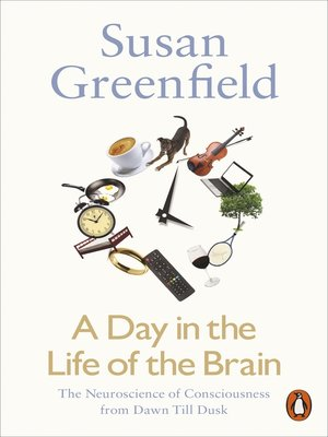 cover image of A Day in the Life of the Brain