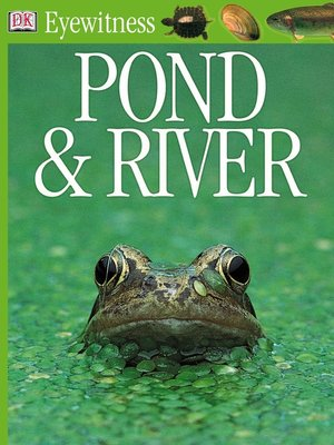 cover image of Pond and River
