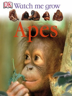 cover image of Apes