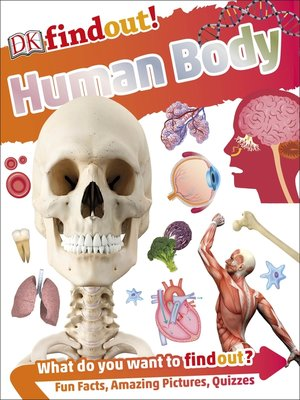 cover image of Human Body