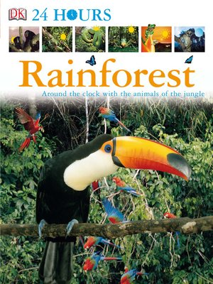cover image of Rainforest