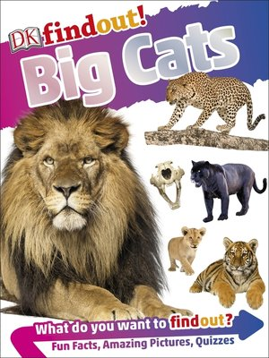 cover image of DKfindout! Big Cats