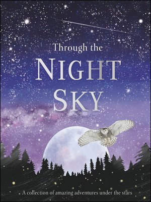 cover image of Through the Night Sky