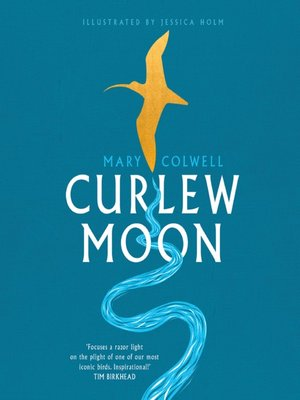 cover image of Curlew Moon