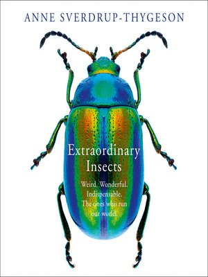 cover image of Extraordinary Insects
