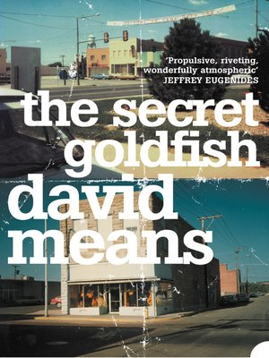 cover image of The Secret Goldfish