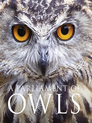 cover image of A Parliament of Owls