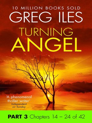 cover image of Turning Angel, Part 3, Chapters 14 - 24