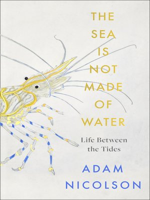 cover image of The Sea is Not Made of Water