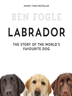 cover image of Labrador