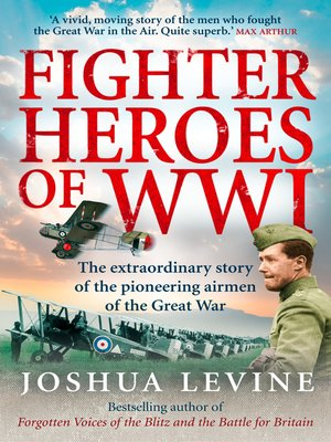 cover image of Fighter Heroes of WWI