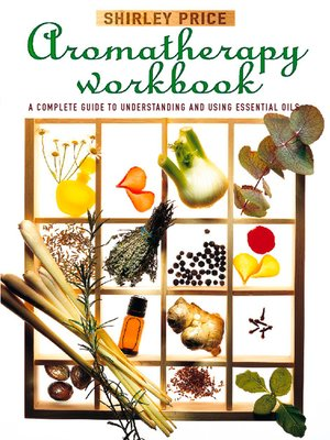 cover image of Aromatherapy Workbook