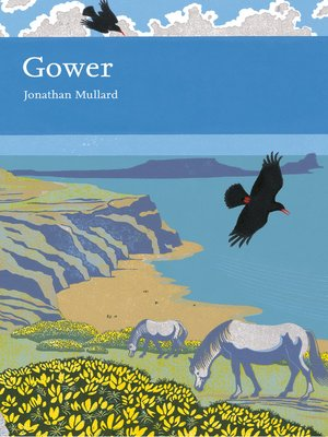 cover image of Gower