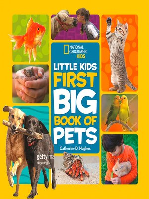 cover image of Little Kids First Big Book of Pets