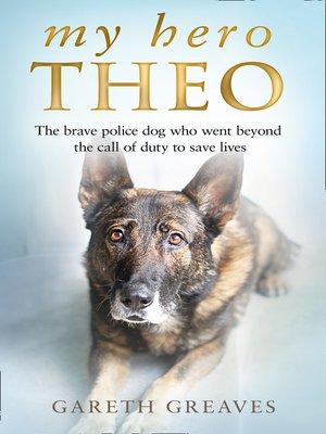 cover image of My Hero Theo
