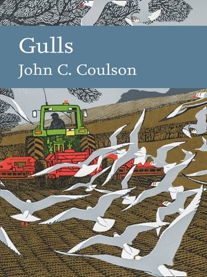 cover image of Gulls