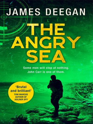 cover image of The Angry Sea