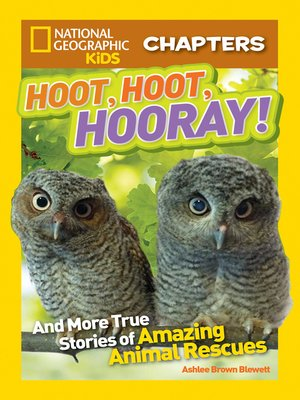 cover image of Hoot, Hoot, Hooray!