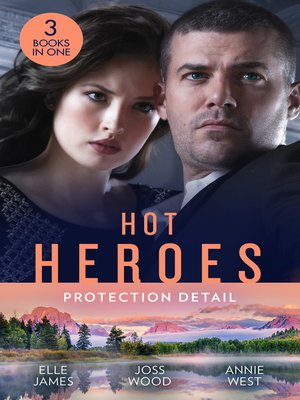 cover image of Hot Heroes