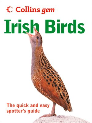 cover image of Irish birds