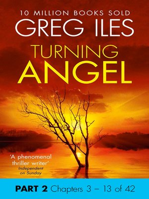 cover image of Turning Angel, Part 2, Chapters 3 - 13