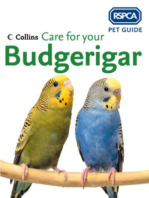 cover image of Care for your Budgerigar