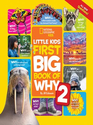 cover image of Little Kids First Big Book of Why 2