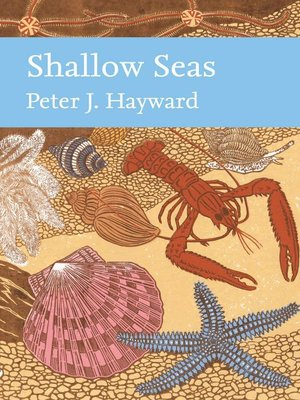 cover image of Shallow Seas