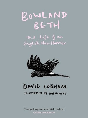 cover image of Bowland Beth