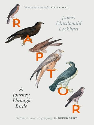 cover image of Raptors