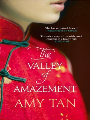 cover image of The Valley of Amazement