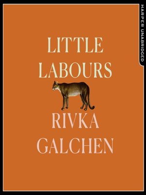 cover image of Little Labours