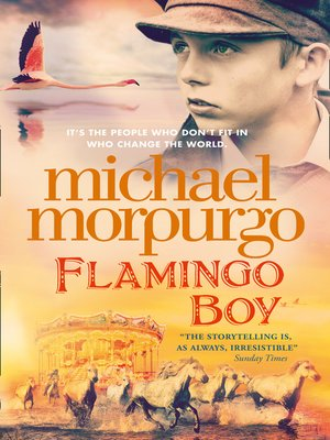 cover image of Flamingo Boy