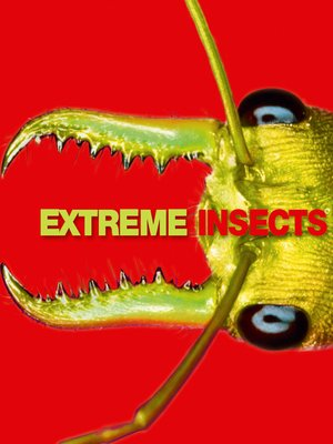 cover image of Extreme Insects