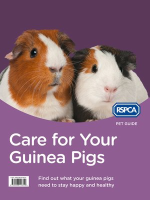 cover image of Care for Your Guinea Pigs (RSPCA Pet Guide)