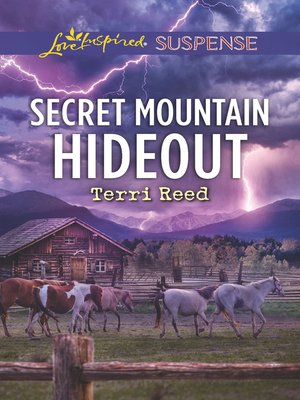 cover image of Secret Mountain Hideout