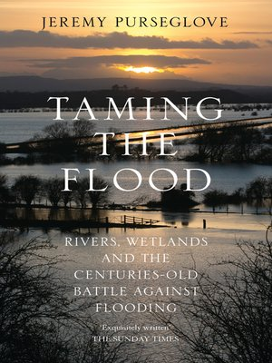 cover image of Taming the Flood