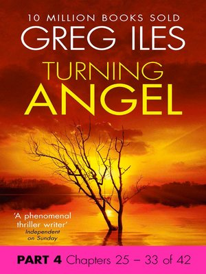 cover image of Turning Angel, Part 4, Chapters 25 - 33