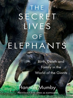 cover image of The Secret Lives of Elephants