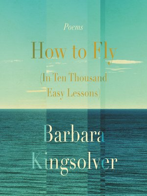 cover image of How to Fly (In Ten Thousand Easy Lessons)