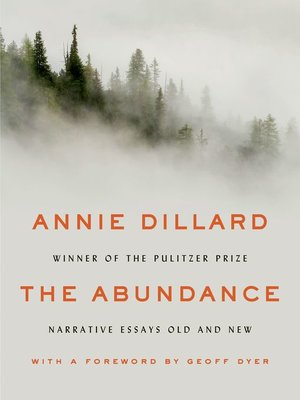 cover image of The Abundance
