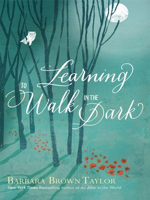cover image of Learning to Walk in the Dark